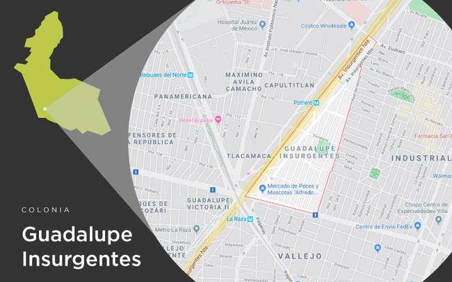 46-Guadalupe-Insurgentes